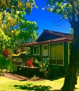Maui Ocean View Cottage
